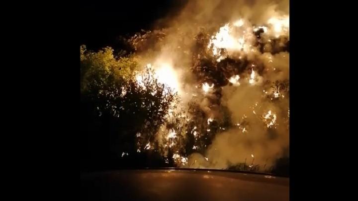 Gori deponija u Kovinu, ministarka se pravi mrtva! (VIDEO)
