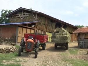 За четири године три пута више младих пољопривредника, шта их привлачи