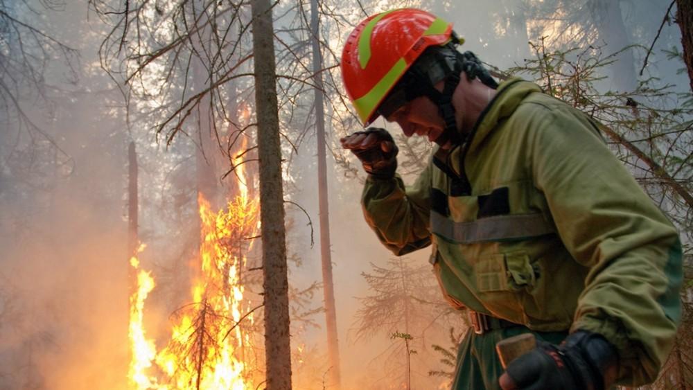 Gotovo 200 šumskih požara u Sibiru, gust dim prekrio Jakutsk i još 50 mesta