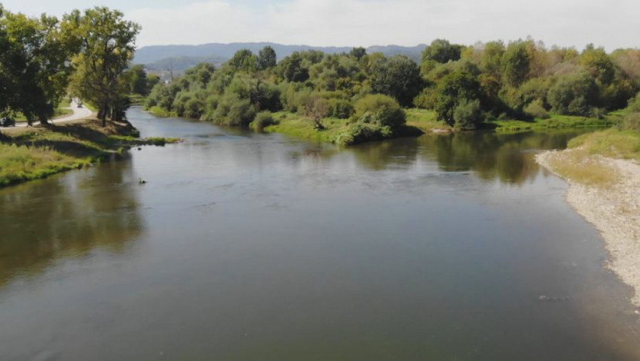 Ispituje se uzrok uginuća ribe u Kolubari: Inspekcija za zaštitu životne sredine odmah reagovala