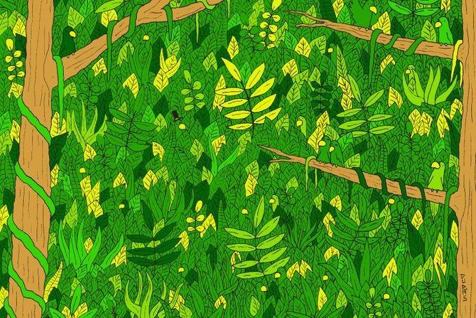 Nerealna mozgalica: Skoro niko nije uspeo da pronađe zmiju na slici. Da li vi možete?