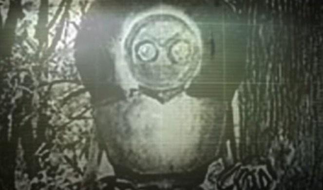 MISTERIJA ČUDOVIŠTA IZ FLETVUDA! Blistava kugla pala je sa neba, a kad su prišli bliže videli su monstruma od 3,5 metra! /VIDEO/