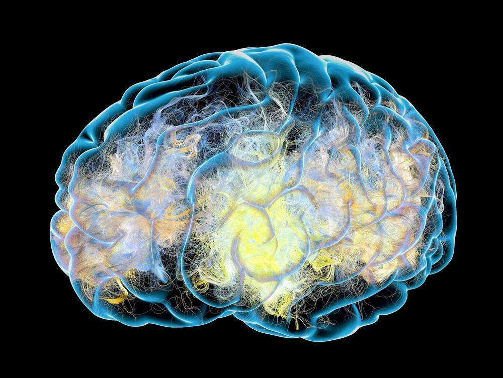 MNOGE NAVIKE KOJE PONAVLJAMO SVAKODNEVNO MOGU IZAZVATI TRAJNO OŠTEĆENJE MOZGA: Smesta ih izbacite iz života!