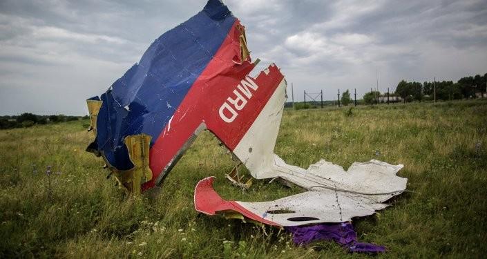 Русија: Америка скрива истину о паду малезијског авиона у Донбасу