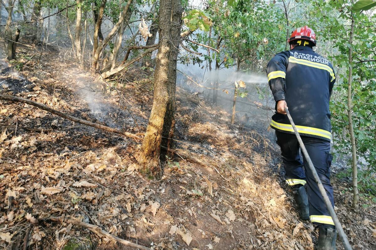 GORI PREKO HEKTAR ŠUME U SELU PORED ČAČKA: Požar preti da stigne do kuća, vatrogasci se satima bore sa vatrenom stihijom