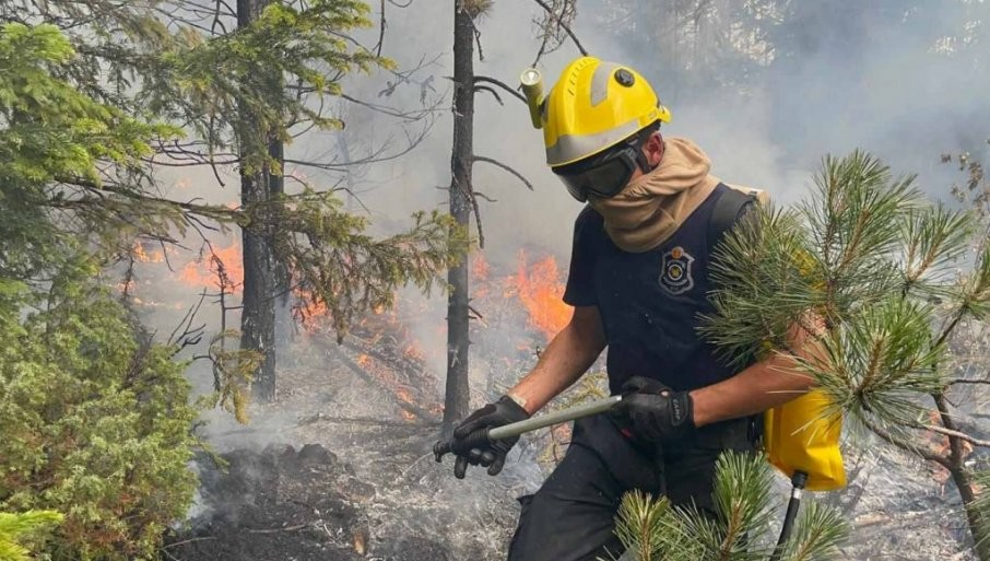 VULIN SAOPŠTIO POBEDNIČKE VESTI: Požari kod Nove Varoši i Priboja lokalizovani