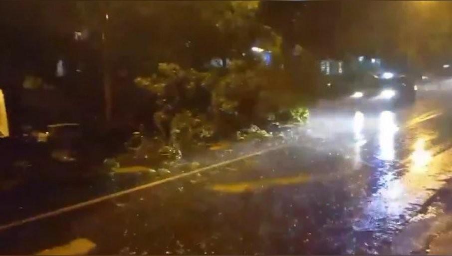 HAOS NA BANOVOM BRDU - DRVO PALO NASRED ULICE! Strašno nevreme pogodilo Beograd (VIDEO)