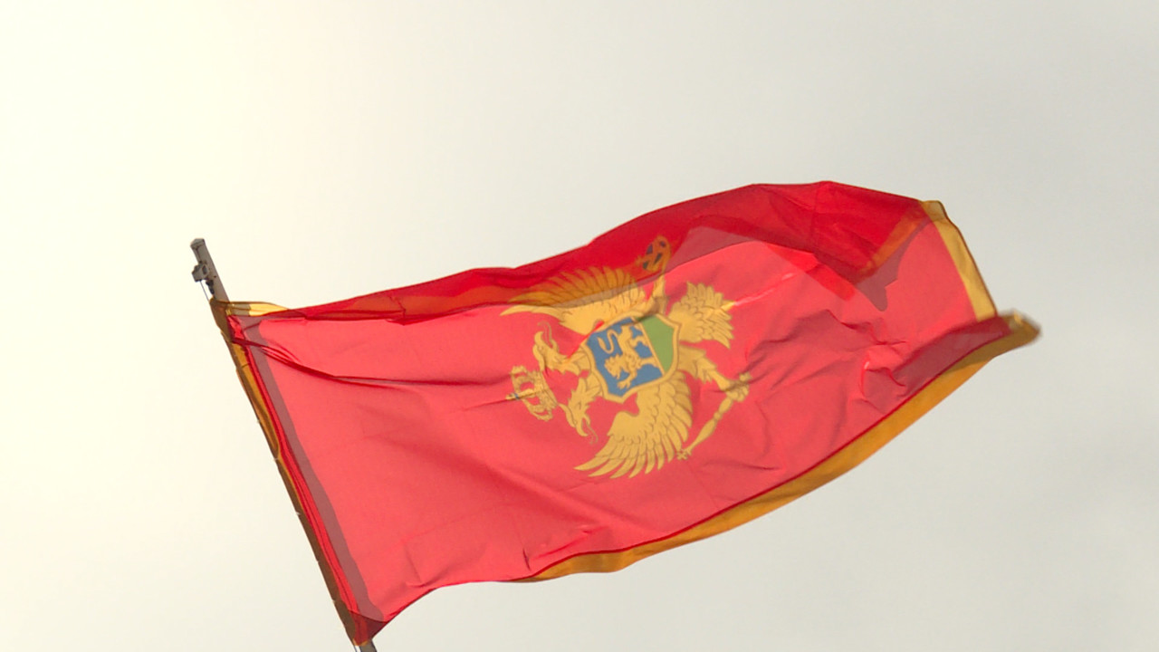 Montenegro's Govt cancels contract with expert for celebrating Mladic