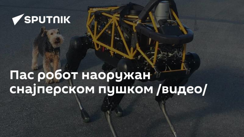 Пас робот наоружан снајперском пушком /видео/