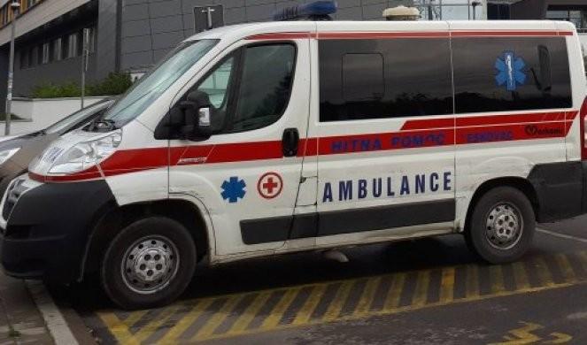UŽAS U SJENICI! Pas izujedao devojčicu (8) po glavi i telu, sa teškim povredama smeštena u bolnicu!