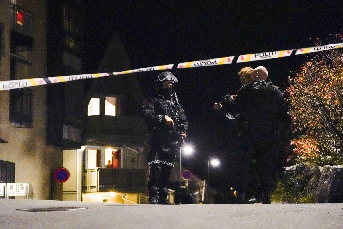 Više ubijenih u napadu lukom i strelom u Norveškoj