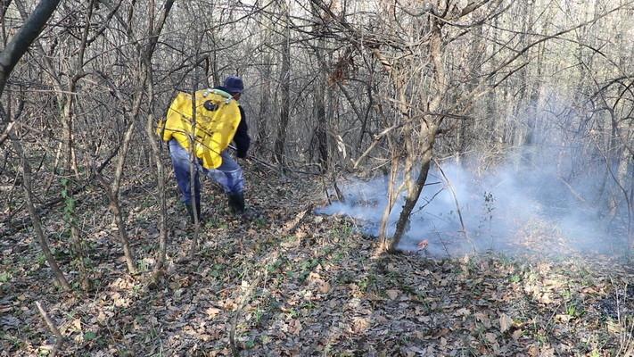 Lokalizovan požar u Vidovi, obustavljen železnički saobraćaj