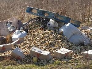 Поред кућа у Сурчину бачено 20 тона пилећих ногица – ко тајно прави дивље депоније